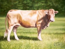 """""""Big Red"""", oil on canvas of Limousine cow"""