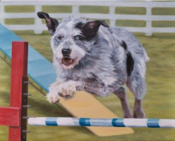 """""""Casper"""", oil on canvas of mixed breed agility dog"""