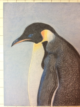 Something starting with P, in pastel pencil