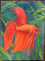 Fish, watercolor