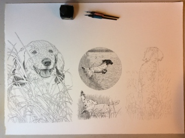 Once the basic outlines are penciled I start inking.